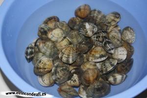 Almejas a la marinera, poner las almejas en agua con sal