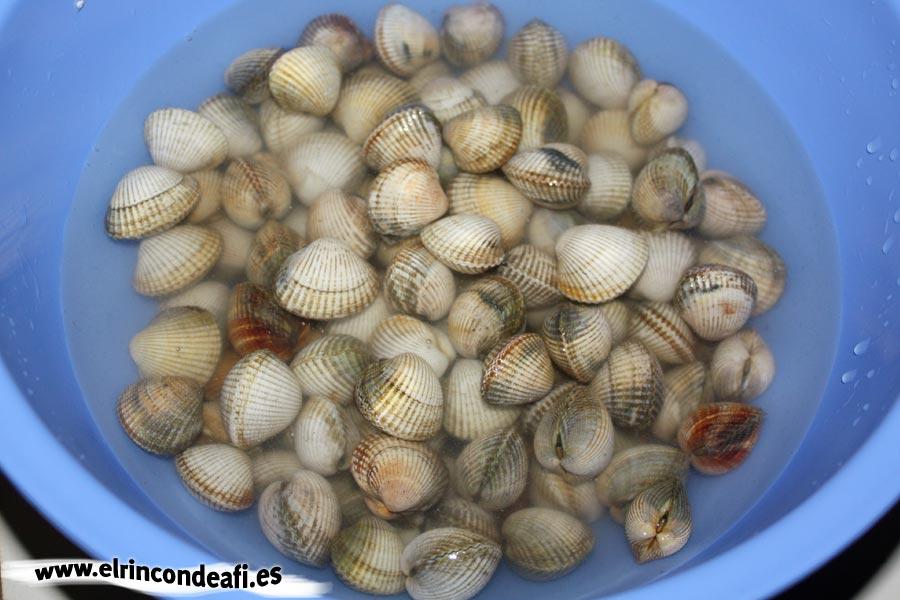 Berberechos al ajillo, mantenerlos en agua