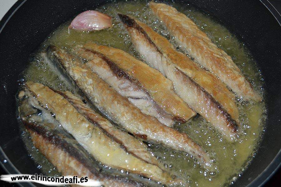 Filetes de caballa rebozados, freír en abundante aceite de oliva
