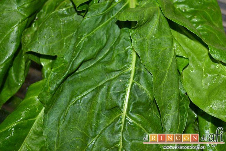 Rollitos de acelga, quesos y piñones, lavar las hojas de acelga retirándoles las pencas