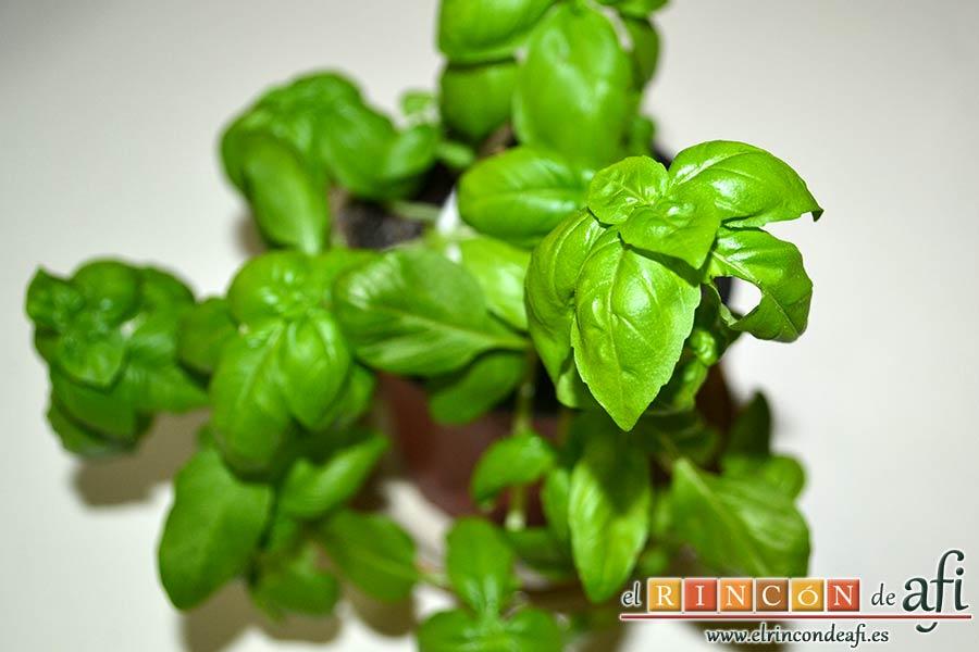 Tortilla de albahaca, elegir unas hojas de albahaca fresca