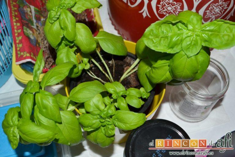 Brochetas de sandía, queso y pepino, coger unas hojas de albahaca